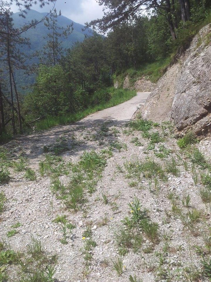 Carnia: appello per la strada da Cavazzo a Pusea di Verzegnis
